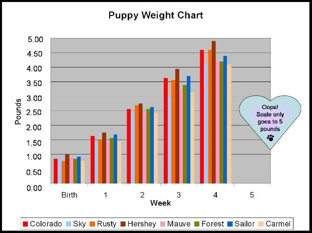 puppy growth chart - D...